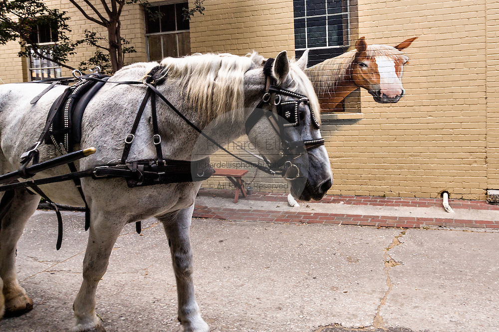A carriage horse passes a painted horse along a wall at a barn in historic Charleston, SC.