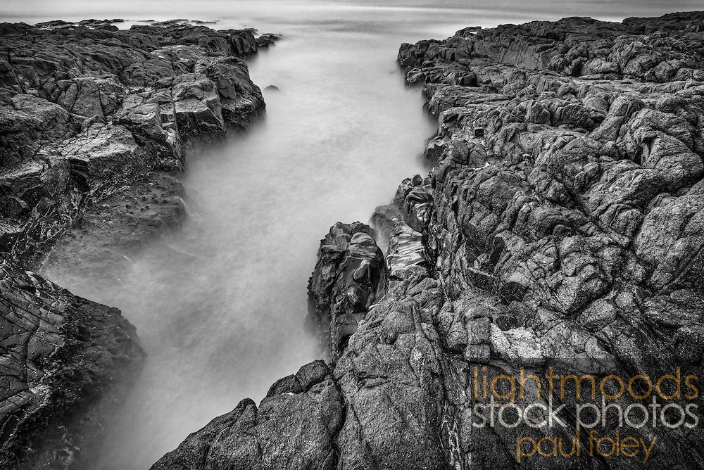 Rocky Shoreline, Bass Point, Shellharbour, NSW, Australia