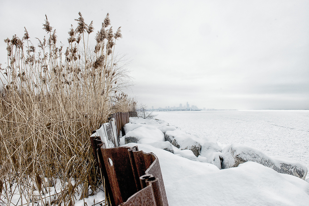 Cleveland Skyline with winter snow and gras at the Lake Front Nature Preserve on Jan. 10, 2014.