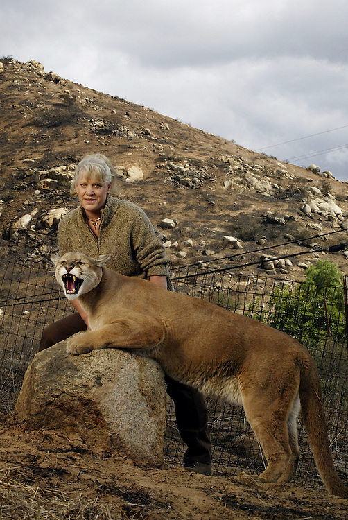 "Joan Embery rescued 30 wild animals and 30 horses from her Lakeside Ranch as a fire roared up to the property line. Embery is seen with ""Mugger"", a 7-yr-old mountain lion, ""Claudia"" an Andean Condor, and Belles Peppy Boy, Joan's favorite horse. Photographed at the site where Joan and Duane (seen with her in the photos of horses), along with employees, beat the flames from the Cedar Fire that reached their ranch.  .© Todd Bigelow/Aurora."