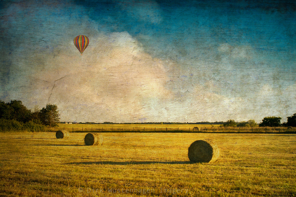 Haybales on a field in evening light. Textured photography