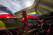 CULIACAN, MEXICO - FEBRUARY 6, 2017: Fans wave Puerto Rican and Venezuelan flags in the stands during the Caribbean Series semi-final game between Puerto Rico and Venezuela at Estadio de los Tomateros on February 6, 2017 in Culiacan, Rosales. (Photo by Jean Fruth)