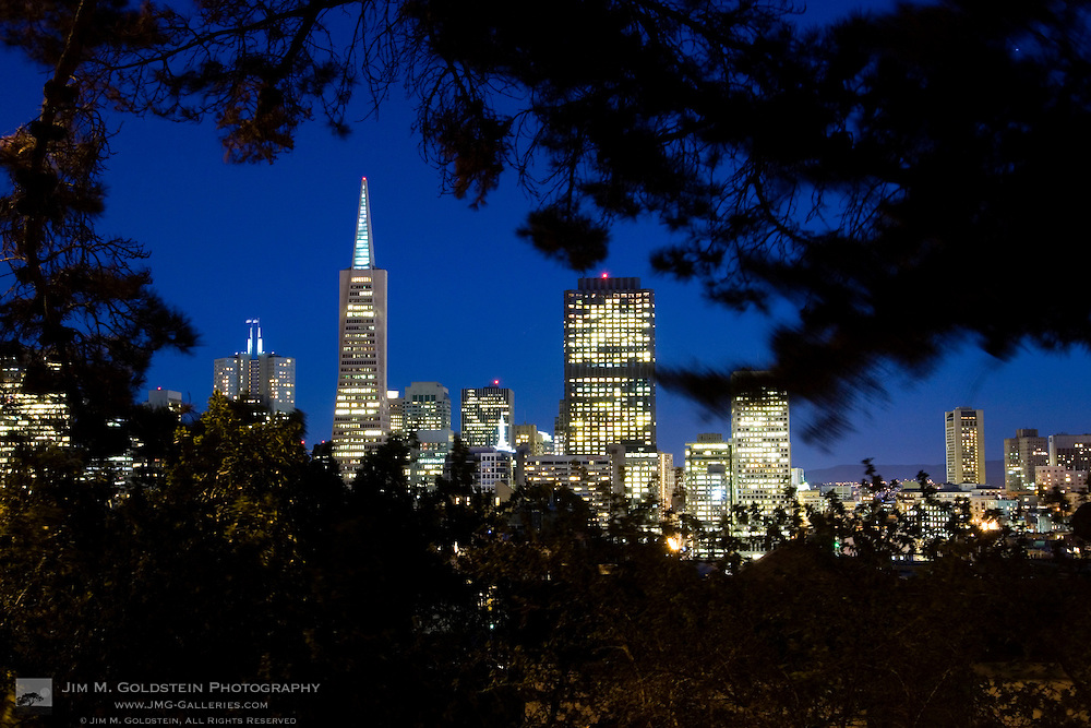 A view of the San Francisco skyline at dusk