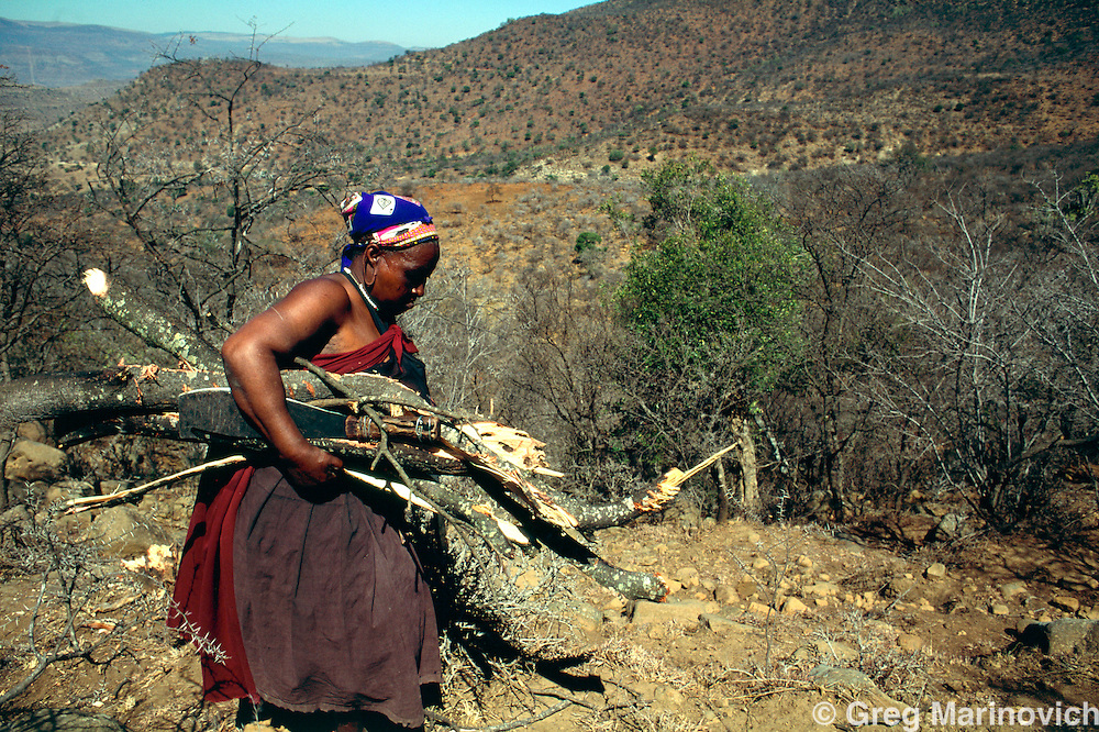 Msinga KwazuluNatal 510 September 1995. A woman carried firewood from a distant area to her home in the Msinga area of KwaZulu Natal. Msinga is one of South Africa';s most impoverished areas and most of the men tafvel to the Gauteng or Durban areas for wo