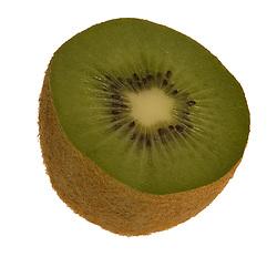 fruit; kiwi