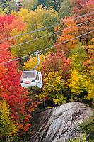 Mont-Tremblant in autumn. October 9, 2012. © Allen McEachern.