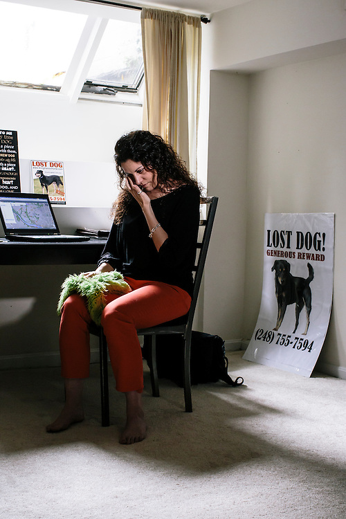 Janet Mihalyfi at her desk in Georgetown, where she monitors sightings of her lost dog, Havoc. Havoc, a five-year-old black and tan mix breed, has been missing for almost a year, and Mihalyfi has spent nearly $30,000 to try and find her.