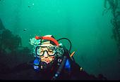 B Diving Feb & Jun 1992