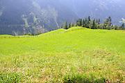 Austria, Tyrol  Zillertal