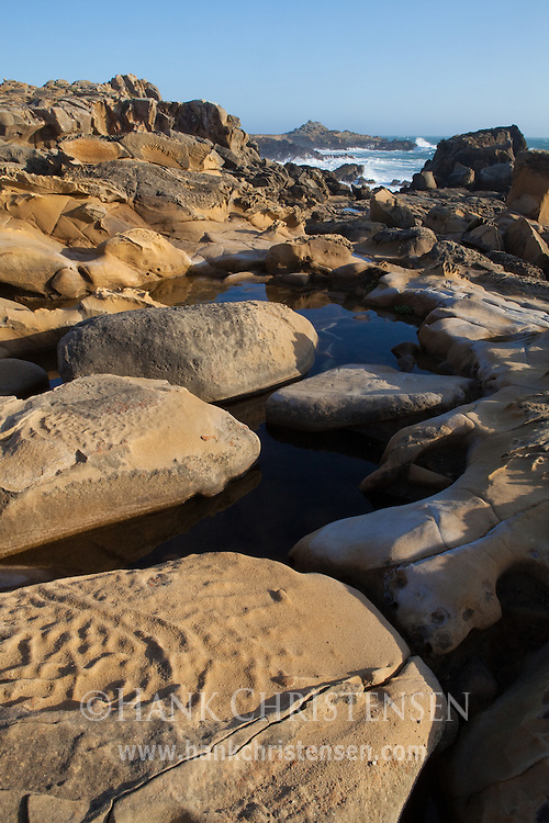 Tidepools adorn sculpted sandstone headlands, Salt Point State Park, California