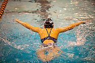 Vashon Seals Swim Team January Challenge