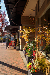 North America, United States, Washington, Bellevue. Shops and cafes on Old Main Street.