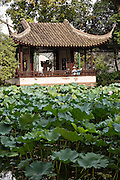 Humble Administrator's garden in Suzhou, China.