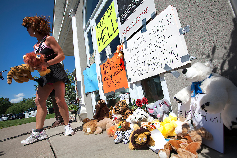 "Heidi Ziman of Golden Valley moves some stuffed animals that were left with signs at the dental office of lion hunter Walter James Palmer in Bloomington, MN, July 29, 2015. Ziman taped her own sign to the door which read ""PALMER, there's a deep cavity waiting for YOU!"""