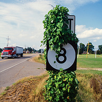The kudzu fine is famous for covering anything that stands still. It was definitely taking over the road sign.
