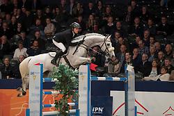 Greve Willem, NED, Carrera<br /> Springen Grote Prijs<br /> KWPN Hengstenkeuring 2017<br /> © Dirk Caremans<br /> 02/02/17