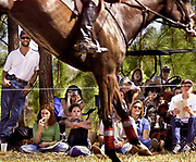 Spectators line the ropes around the Red Hills Cross-Country course soaking up the thrills and the sun on Saturday in Tallahassee.