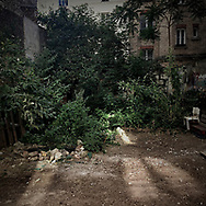 A small vacant lot nested between buildings in a narrow street of Paris 18th arrondissement. 23 June 2017.