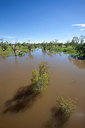 The muddy waters of the Fitzroy River at the Brooking Crossing at Fitzroy Crossing.