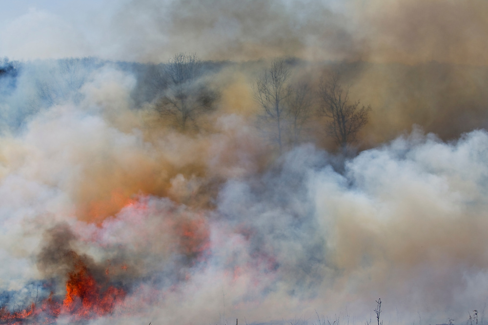 Stedman Burn.-