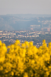 © Licensed to London News Pictures. 21/04/2015. Bristol, Avon, UK. The iconic Clifton Suspension Bridge seen from a rapeseed field outside of Bristol this morning, 21st April 2015. The south west of England is set for more warm temperatures and plenty of sunshine today. Photo credit : Rob Arnold/LNP