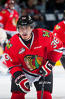 KELOWNA, CANADA - MAY 1: Mitchell Walter #36 of Portland Winterhawks skates against the Kelowna Rockets on May 1, 2015 at Prospera Place in Kelowna, British Columbia, Canada.  (Photo by Marissa Baecker/Getty Images)  *** Local Caption *** Mitchell Walter;