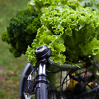 A bicycle loaded with fresh vegetables at a farmers' market.