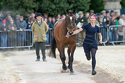 Agnew Charlotte, (GBR), Out Of Africa Two<br /> First Horse Inspection - Mitsubishi Motors Badminton Horse Trials <br /> Badminton 2015