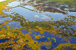 Aerial view of marsh lands along the coast of Cook Inlet between Anchorage and Lake Clark National Park, Alaska, United States of America