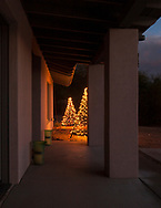 Christmas trees in Paradise Valley AZ on December 25, 2016.