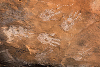 Handprints on ceiling at Jail House Ruins, Bullet Canyon, Grand Gulch Primitive Area, Cedar Mesa Utah Bears Ears National Monument