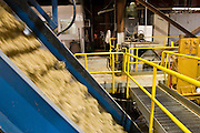 15 NOVEMBER 2005 - FRANKLIN, LA: Sugar cane pulp moves through the grinders at the St. Mary Sugar Co-Op Mill near Franklin, Louisiana during the 2005 sugar cane harvest. The grinders pulverize the cane to extract the juice, which contains the sugar, from it. Louisiana is one of the leading sugar cane producing states in the US and the economy in southern Louisiana, especially St. Mary and Iberia Parishes, is built around the cultivation of sugar. The mill employs about 180 people. The two mills near Franklin contribute about $150 million (US) to the local economy. Sugar growers in the area are concerned that trade officials will eliminate sugar price supports during upcoming trade talks for the proposed Free Trade Area of the Americas (FTAA). They say elimination of price supports will devastate sugar growers in the US and the local economies of sugar growing areas. They also say it will ultimately lead to higher sugar prices for US consumers.PHOTO BY JACK KURTZ
