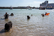 Trained life saving dogs cool down in the sea at Folkestone Harbour beach, Folkesotne, Kent.