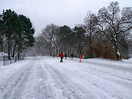 Winter scene on the East drive in Central Park