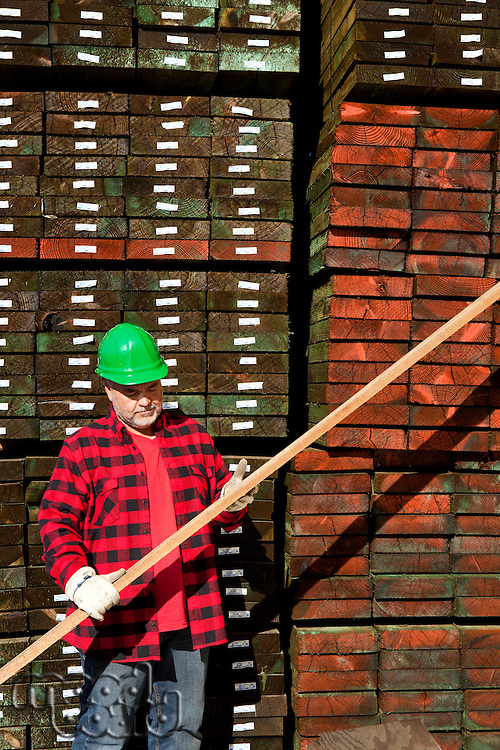 Worker inspecting wood in front of hard wood pile