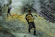 BONDOWOSO, EAST JAVA - DECEMBER 17: A miner brings a big chunk of pure yellowish sulfur during annual sacrificial ritual held in Ijen sulfur crater, Bondowoso, East Java, Indonesia, December 17, 2013. The miners held the sacrifice in order to ask blessing of good result and prevent from accident or injury. The tradition begun in 1978 after a tragedy that killed four people and fourteen black out cause of poisoning gas. Daily miners produce fifteen ton of sulfur or approximately 450 ton a month. Come close to 150 miners work everyday. All the sulfur goes to sugar factory ans used as sugar whitening.