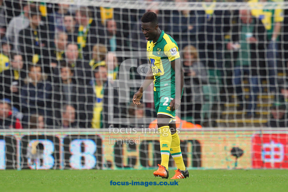Alexander Tettey of Norwich show his frustration after his side concede their 1st goal during the Barclays Premier League match at Carrow Road, Norwich<br /> Picture by Paul Chesterton/Focus Images Ltd +44 7904 640267<br /> 24/10/2015