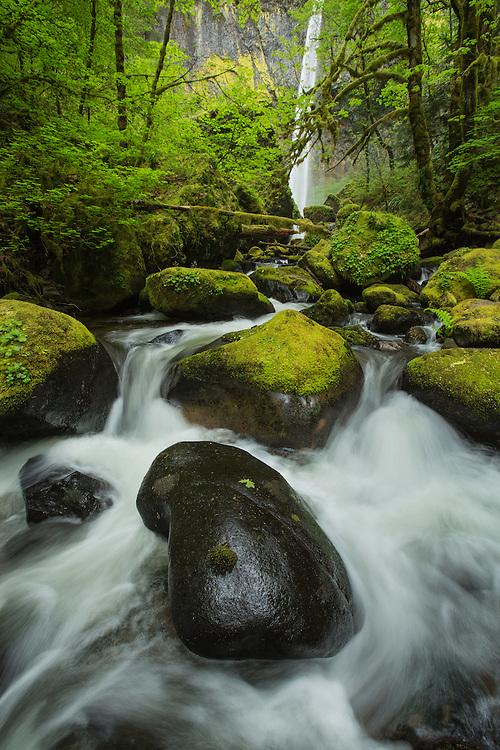 intimate landscape scene of Elowah Falls, Columbi River Gorge, Oregon