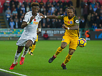 Football - 2017 / 2018 Premier League - Swansea City vs. Brighton & Hove Albion<br /> <br /> Tammy Abraham of Swansea City attacks held by Gaëtan Bong of Brighton and Hove Albion, at The Liberty Stadium.<br /> <br /> COLORSPORT/WINSTON BYNORTH