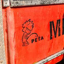 A statement about PETA on the side of Captain Richard Smith's boat, 'Bad Behavior',  on the wharf at Great Wass Lobster in Beals, Maine.