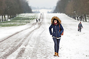 UNITED KINGDOM, Windsor: 01 February 2019. <br /> A walker braves the cold and the snow along The Long Walk in Windsor this morning. The snow has caused a number of schools to be closed across the country today because of the adverse weather. <br /> Rick Findler / Story Picture Agency