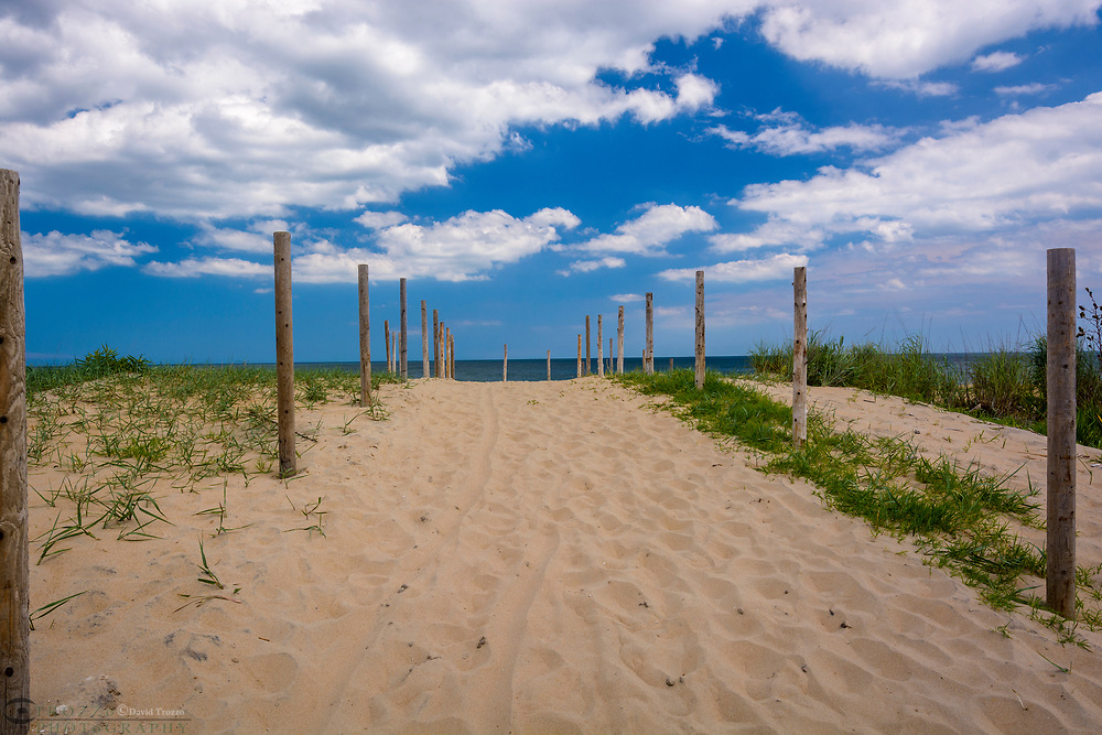 Sand dunes and beach at Fenwick Island, Delaware, USA.