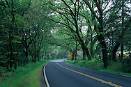 Rural Country Highway 128, in the Anderson Valley, near Philo, Mendocino County, California