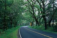 Rural Country Highway 128, in the Anderson Valley, near Philo, Mendocino County, California