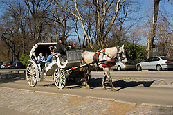 New York City, New York: Horse carriage ride in Central Park  .Photo #: ny259-14707  .Photo copyright Lee Foster, www.fostertravel.com, lee@fostertravel.com, 510-549-2202.