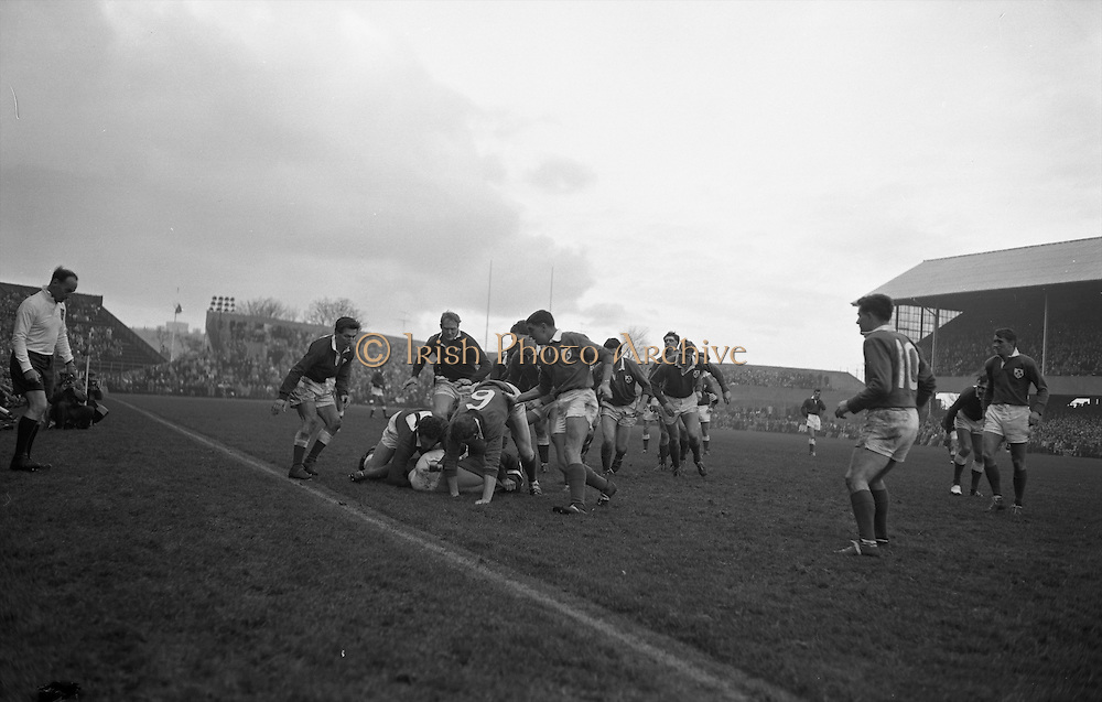 Irish forwards, MD Kiely and CJ Dick lead the Irish players to the rescue of scrum half, J C Kelly, bare backed on ground, ..Irish Rugby Football Union, Ireland v Wales, Five Nations, Landsdowne Road, Dublin, Ireland, Saturday 17th November, 1962,.17.11.1962, 11.17.1962,..Referee- J A E Taylor, Scottish Rugby Union, ..Score- Ireland 3 - 3 Wales, ..Irish Team, ..T J Kiernan,  Wearing number 15 Irish jersey, Full Back, University college Cork Football Club, Cork, Ireland,  ..W R Hunter, Wearing number 14 Irish jersey, Right Wing, C I Y M S Rugby Football Club, Belfast, Northern Ireland, ..A C Pedlow, Wearing number 13 Irish jersey, Right Centre,  C I Y M S Rugby Football Club, Belfast, Northern Ireland, ..M K Flynn, Wearing number 12 Irish jersey, Left Centre, Wanderers Rugby Football Club, Dublin, Ireland, ..N H Brophy, Wearing number 11 Irish jersey, Left wing, London Irish Rugby Football Club, Surrey, England, ..M A English, Wearing number 10 Irish jersey, Stand Off, Landsdowne Rugby Football Club, Dublin, Ireland, ..J C Kelly, Wearing number 9 Irish jersey, Scrum Half, University College Dublin Rugby Football Club, Dublin, Ireland, ..M P O'Callaghan, Wearing number 1 Irish jersey, Forward, Sundays Well Rugby Football Club, Cork, Ireland, ..A R Dawson, Wearing number 2 Irish jersey, Forward, Wanderers Rugby Football Club, Dublin, Ireland, ..P J Dwyer, Wearing number 3 Irish jersey, Forward, University College Dublin Rugby Football Club, Dublin, Ireland, ..W J McBride, Wearing number 4 Irish jersey, Forward, Ballymena Rugby Football Club, Antrim, Northern Ireland,..W A Mulcahy, Wearing number 5 Irish jersey, Captain of the Irish team, Forward, Bective Rangers Rugby Football Club, Dublin, Ireland,  ..P J A O'Sullivan, Wearing  Number 6 Irish jersey, Forward, Galwegians Rugby Football Club, Galway, Ireland, ..C J Dick, Wearing number 8 Irish jersey, Forward, Ballymena Rugby Football Club, Antrim, Northern Ireland, ..M D Kiely, Wearing number 7 Irish jersey, Forward, L