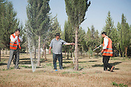 Erbil, Iraqi Kurdistan. Men at work at the Abdulrahman Park, on of the biggest parks of Southern East.