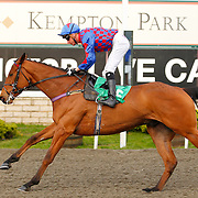 Arty Campbell and Martin Lane winning the 4.50 race