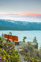 """Sunset at Lake Tahoe 37"" - These Manzanita flowers and bench were photographed at sunset near the Stateline fire lookout in Crystal Bay, Lake Tahoe."