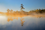 Tree reflection on morning fog on Middle Lake<br /> <br /> Kenora<br /> Ontario<br /> Canada